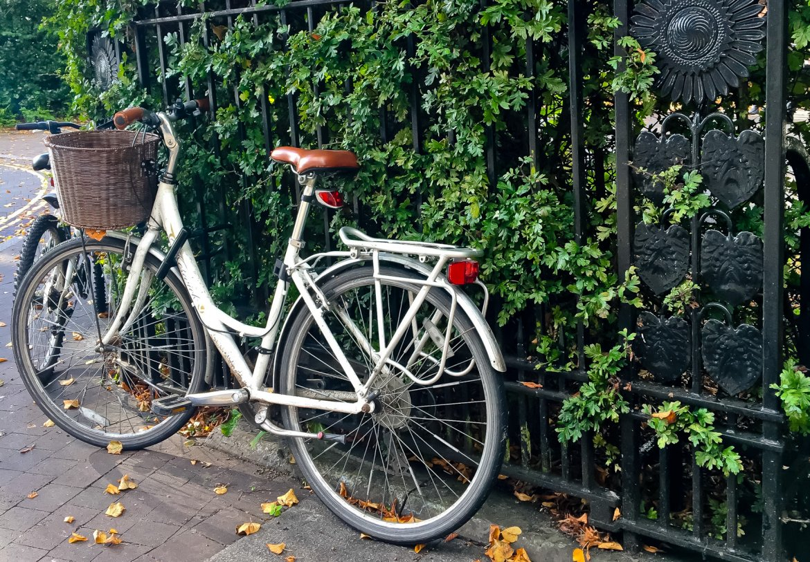What Mel Did - bike on leafed railings
