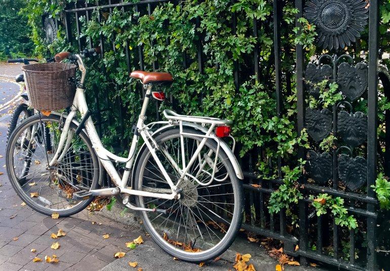 What Mel Did - bike on leafed railings